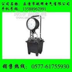 CW601L-A固态防爆泛光工作灯-CW601L-A/充电式-CW601L-A图片