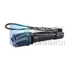TR5823多功能强光巡检电筒/TR5823_TR5823_LED图片