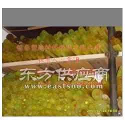 供应优质PU棒纯色无杂质PU棒PU圆棒图片