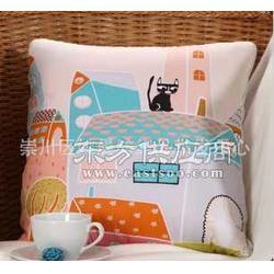 供应多功能抱枕被2图片