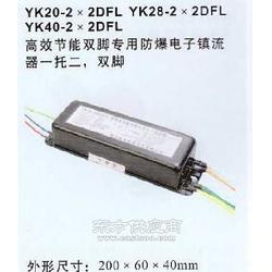 YK20-2DFL 防爆电子镇流器图片