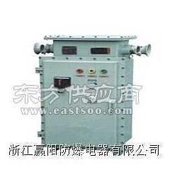 BQXB系列防爆变频器图片