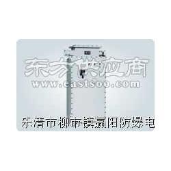 BHSZ系列防爆航空障碍灯(ⅡB)图片
