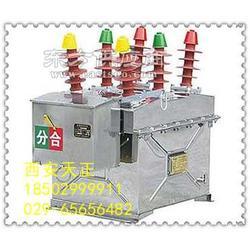 户外交流高压真空断路器ZW8-12G/630带隔离图片