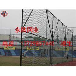 球场防护网防护网专业厂家图片