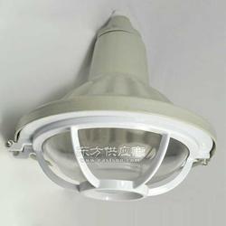 三防管吊式工厂灯FAD-L-L70gZ FAD-L-L70gZH图片