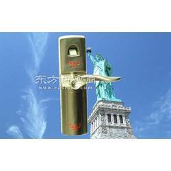 901-B1指纹锁 指纹密码锁 指纹门锁图片