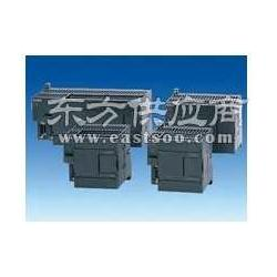 西门子CPU222CPU电池出售图片