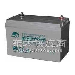 赛特蓄电池BT-HSE65-12/10HR厂家直销图片
