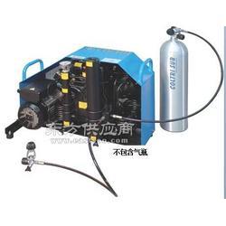 科尔奇MCH18标准型高压空气填充泵充气泵图片