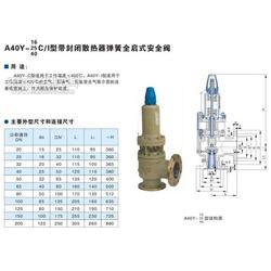 A40Y-100带散热器弹簧全启式安全阀图片