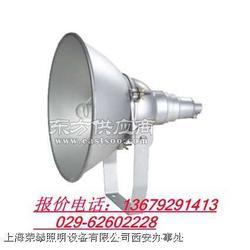 JIW5281.便携式多功能强光灯图片