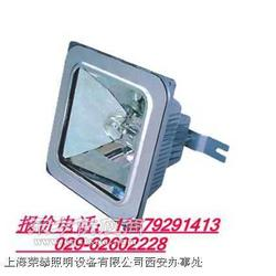 BAD309A/B便携式多功能强光灯,西北售图片