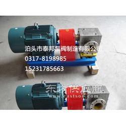 BW石蜡保温泵 泵体设有空心夹层图片