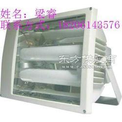 SBF6109 免维护节能泛光灯/泛光无极灯120W图片