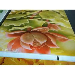 石岩玻璃彩印机/石岩玻璃彩印机厂家/石岩玻璃彩印机图片