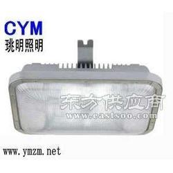 热销高顶灯 三防工厂灯M-NTC9251-400W图片