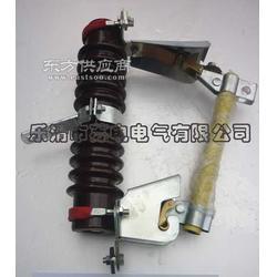 RW7-10/200A价销售图片