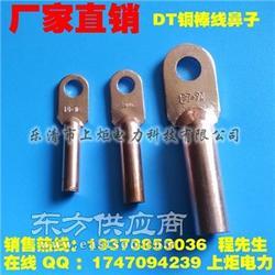 国标质量DT-95MM2镀锡铜鼻子堵油型,厂家现货供应图片