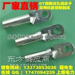 供应120平方镀锡铜鼻子,DT铜端头,铜鼻子 C45鸭嘴比图片