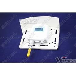 高精度湿球传感器HMT120图片