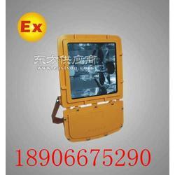 BTC6150-N250W供应防爆泛光灯 钠灯图片