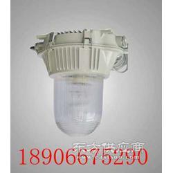 GC101GC101GC101防水防尘灯图片