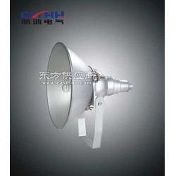SW7510-100WJ氣體放電燈圖片