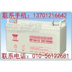 汤浅蓄电池NP38-12铅酸蓄电池图片