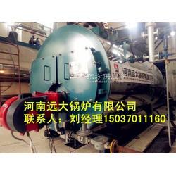 6吨燃气锅炉厂家图片
