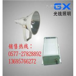 ZY8300-J1000防震投光灯丨ZY8300丨ZY8300图片