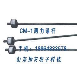 CM-1型测力锚杆矿用图片