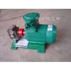 博特特种泵业供应GZYB-3/4.0高压泵图片