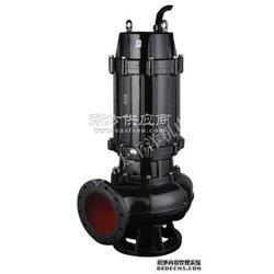 2寸口径污水泵图片
