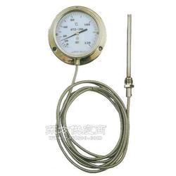 压力式温度计图片