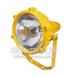 卓安照明NFE350厂家NFE350防爆投光灯图片