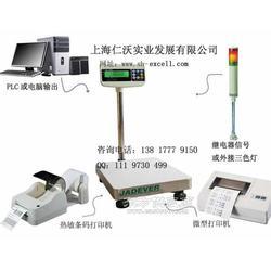 哪个牌子的电子秤带RS-485接口图片