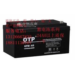 6FM-38 12V38AH 20HR 安全报警系统专用OTP蓄电池图片