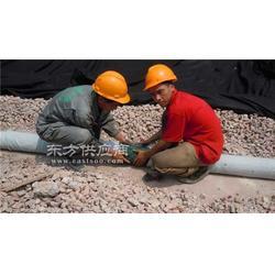 绿化排水盲管 绿化排水盲管施工图片