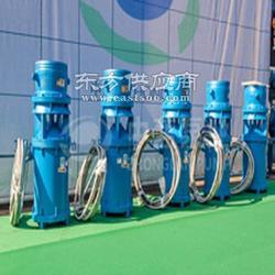 江河防汛轴流泵-专业生产防汛排水泵图片