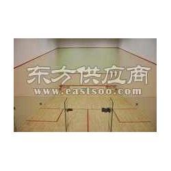 壁球馆设计 各类壁球馆建造施工图片