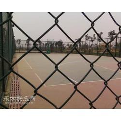 体育场围网及灯光的安装 进口围网 进口灯光图片