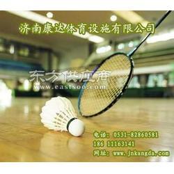 专业承接PVC羽毛球场 排球场施工图片