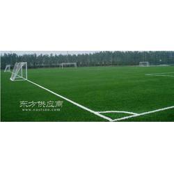 足球场材料人造草坪,人造草坪足球场的类型图片