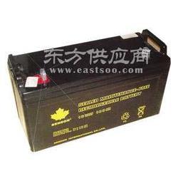12v38ah 山顿UPS蓄电池 代理商图片