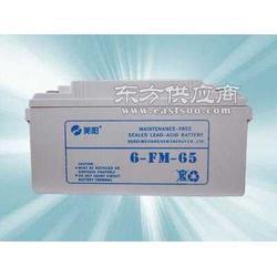 免维护蓄电池12V100AH电源蓄电池美阳蓄电池图片