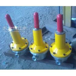 RTZ-52/20B液化氣調壓器燃氣調壓閥圖片