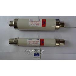XRNT1-10/31.5A给力XRNT-10/31.5A厂家直销图片