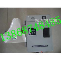 电话机厂家 HAT86XIIP/T-A 基本型特种电话图片