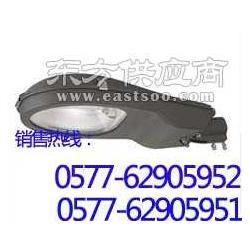 BSE8720BSE8720防爆应急平台灯图片